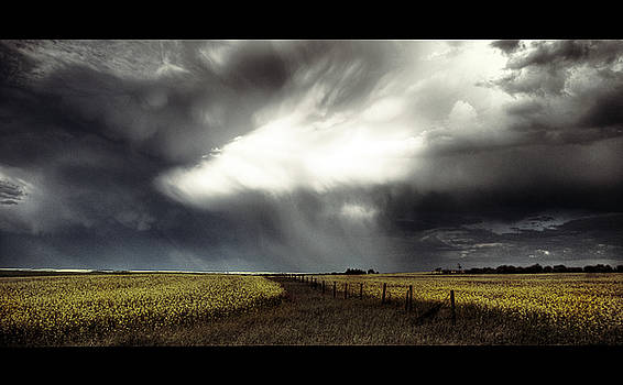 Downpour by Cody James
