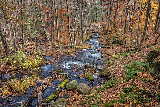 Downstream, Goodwins Mills by Gary Shepard