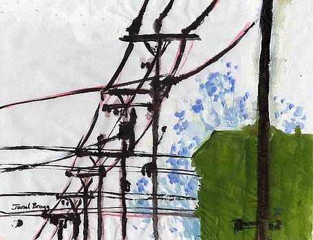 Downtown Anacortes Telephone Wires by Janel Bragg