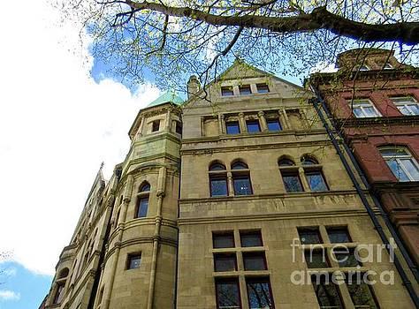 Downtown Dublin 3 by Crystal Rosene