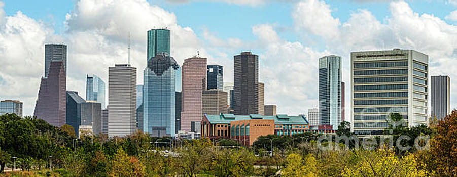 Downtown Houston Texas by Cindy Tiefenbrunn