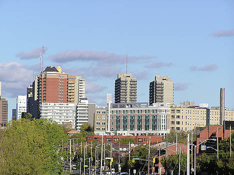 Downtown Ottawa in Distance by Richard Mitchell