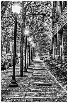 Downtown Royal Oak by Winnie Chrzanowski
