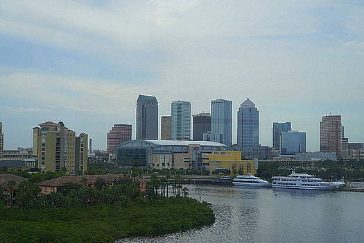 Laurie Perry - Downtown Tampa