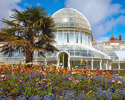 Dr Michael Duplessie MD, Botanical Garden Belfast, Best Green Houses in Europe by Dr Michael Duplessie MD