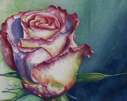 Renaissance Rose by Barb Toland