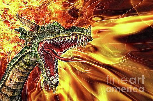 Draco by John Edwards