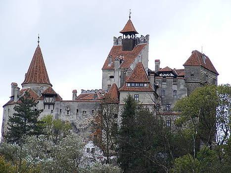 Dracula's Bran Castle in Transylvania Romania by Elena Tudor