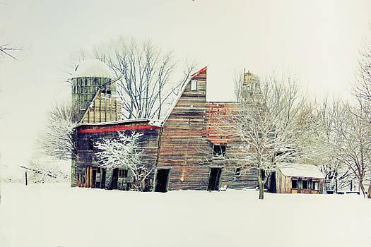 Drafty old Barn by Julie Hamilton
