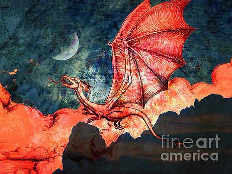 Dragon Flight by Robert Ball