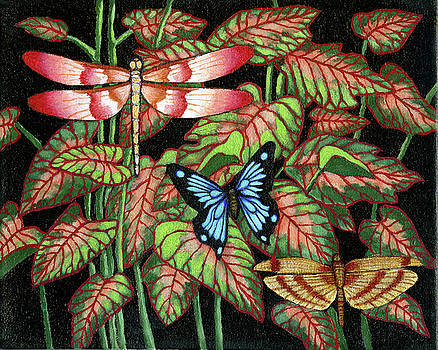 Dragon Fly and Butterfly by Jane Whiting Chrzanoska