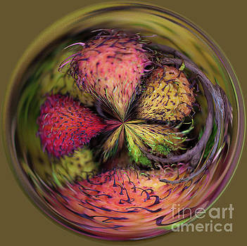 Dragon fruit by George Cathcart