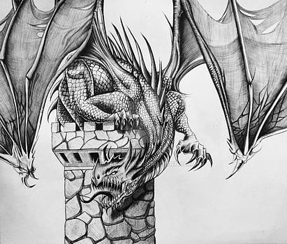 Dragon by Maritza Montnegro
