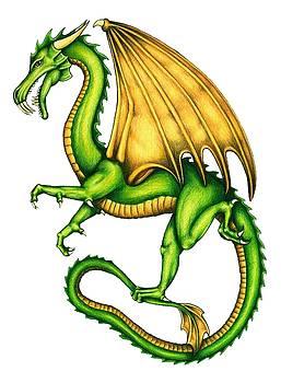 Dragon by Sheryl Unwin