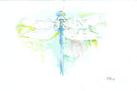 Dragonfly by Cher Clemans