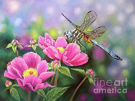 Dragonfly by Anne Koivumaki - Fine Art Anne