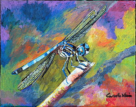 Dragonfly by Carole Weis