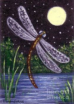 Dragonfly Dreaming by Sandra Estes