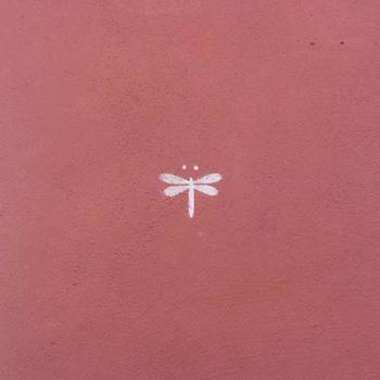 #dragonfly #goodluck #redthursday by Heidi Lyons