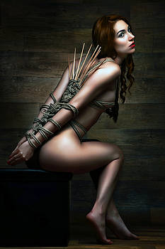 Rod Meier - Dragonfly Knot, Bamboo Sticks - Fine Art of Bondage