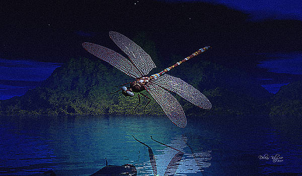 Dragonfly Night Reflections by Deleas Kilgore