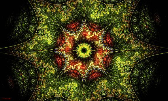 Dragon's Eye by Lorant Zsolt