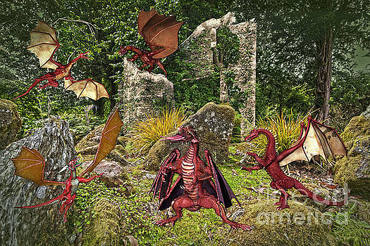 Dragons in the Garden by Terri Waters