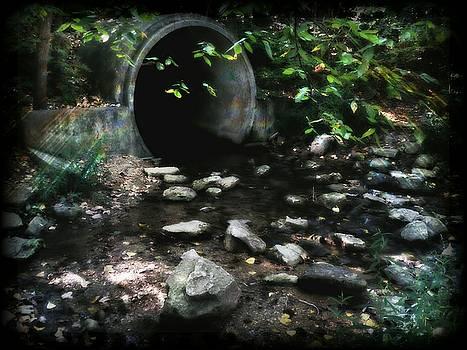 Drain Pool by Michael L Kimble