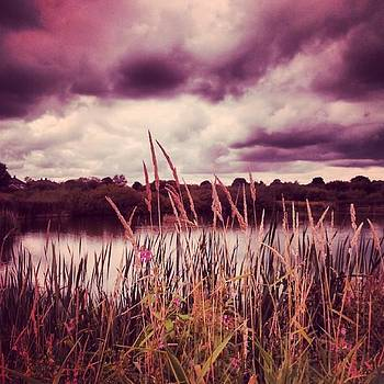 Dramatic Skies And Wild Grasses by Jennie Davies
