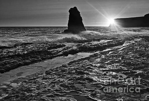 Jamie Pham - Dramatic view of a sea stack in Davenport Beach, Santa Cruz.