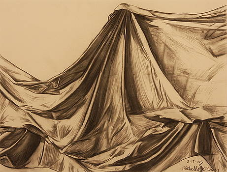 Draped Fabric by Michelle Miron-Rebbe