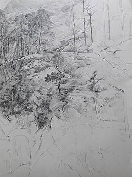 Drawing by Ogwen. by Harry Robertson
