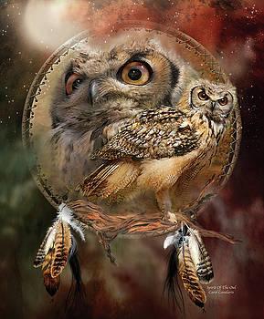 Dream Catcher - Spirit Of The Owl by Carol Cavalaris