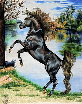 Dream Horse Series 3015 by Cheryl Poland