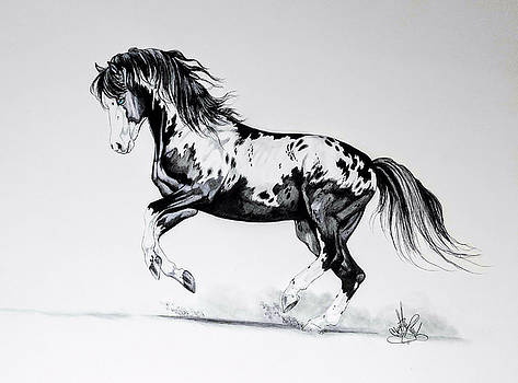 Dream Horse Series - Painted Dust by Cheryl Poland