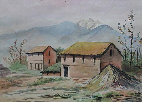 Dream House by Sarupa  Shrestha