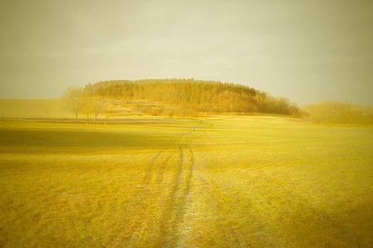 Dream Landscape by Roman Aj
