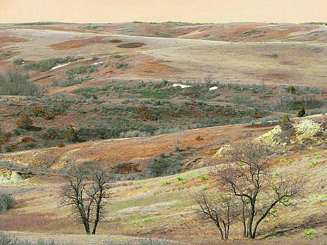 Dream of West Dakota Slopes by Cris Fulton