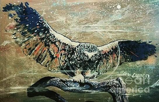 Dream Owl by Zero Cannon