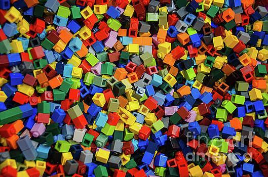 Dreaming in Legos  by Norma Warden