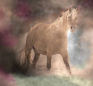 Dreaming Of A Magical Horse by Patricia Keller
