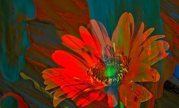 Dreaming of flowers by Jeff Swan