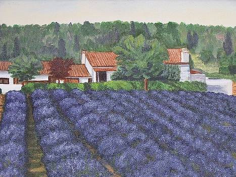 Dreaming of Provence by Cynthia Ablicki