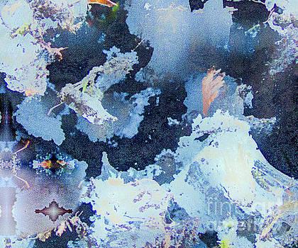 James E Weaver - Dreaming of Spring