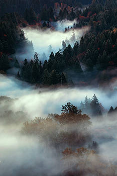 Dreamland, Oregon by Vincent James