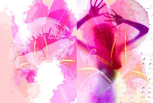 Su Ferguson - Don Burkheimer - Dreams