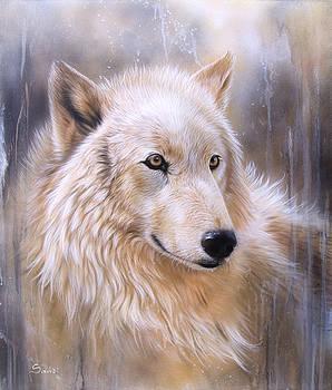 Dreamscape - Wolf II by Sandi Baker