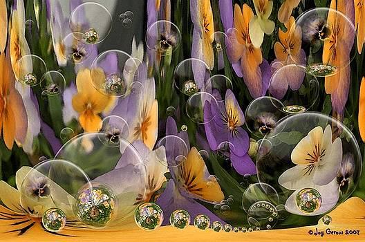 Dreamscaped Violas by Joy Gerow