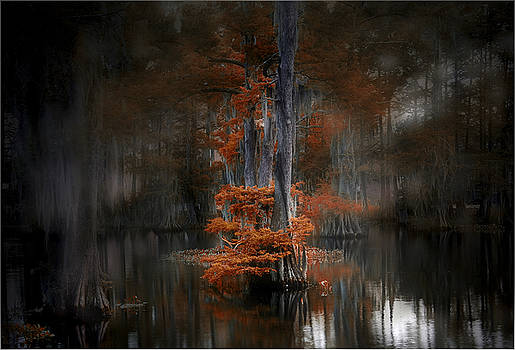 Dreamy Autumn by Cecil Fuselier