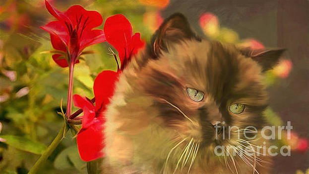 Kathryn Strick - Dreamy Cat with Geranium 2015